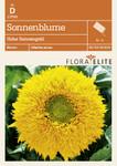 Sonnenblume Hohe Sonnengold von Flora Elite