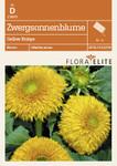Zwergsonnenblume Gelber Knirps von Flora Elite [MHD 06/2019]