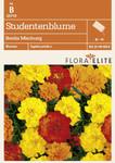 Studentenblume Bonita Mischung [MHD 06/2019] | Studentenblumensamen von Flora Elite [MHD 06/2019]