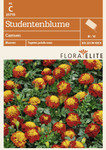 Studentenblume Carmen von Flora Elite [MHD 06/2019]
