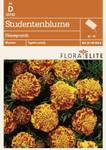 Studentenblume Honeycomb von Flora Elite [MHD 06/2018]