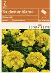 Studentenblume Petite gelb von Flora Elite [MHD 06/2018]