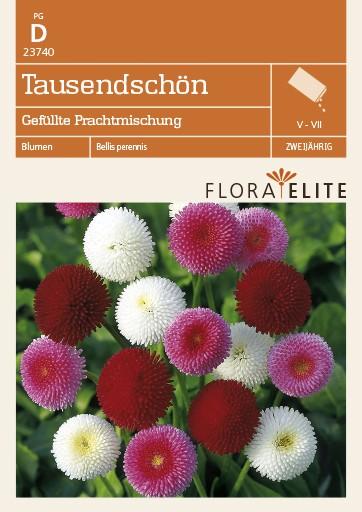 Tausendschön Gefüllte Prachtmischung von Flora Elite