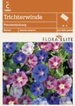 Trichterwinde Prachtmischung von Flora Elite [MHD 06/2019]