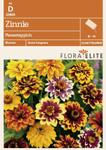 Zinnie Perserteppich | Zinniensamen von Flora Elite