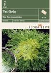 Endivie Trés fine maraichére (Goldherz) von Flora Elite [MHD 06/2018]