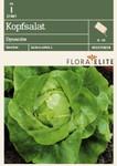Kopfsalat Dynamite | Salatsamen von Flora Elite