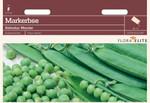 Markerbse Kelvedon Wonder | Markerbsensamen von Flora Elite [MHD 06/2020]