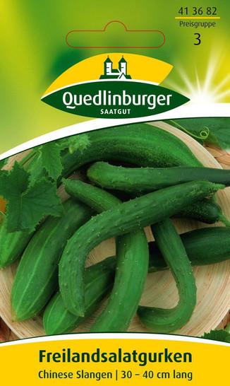 Gurkensamen - Freilandsalatgurke Chinese Slangen von Quedlinburger Saatgut