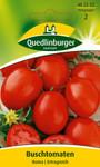Tomatensamen - Buschtomate Roma von Quedlinburger Saatgut