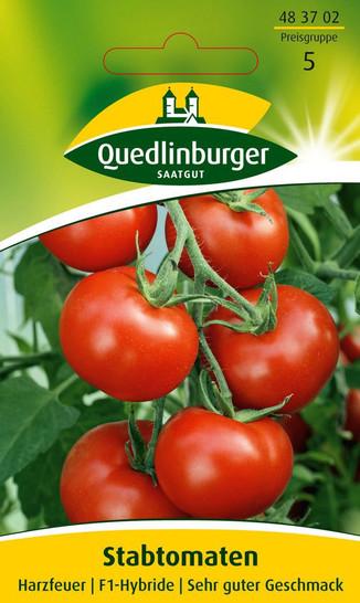 Tomate Harzfeuer F1-Hybride | Tomatensamen von Quedlinburger