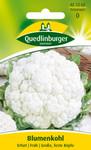 Blumenkohl Erfurter Zwerg | Blumenkohlsamen von Quedlinburger Saatgut