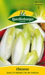 Gemüsesamen - Chicoree Zoom F1 von Quedlinburger Saatgut