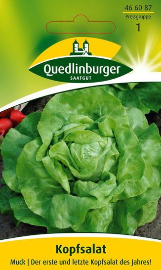 Kopfsalat Muck | Salatsamen von Quedlinburger