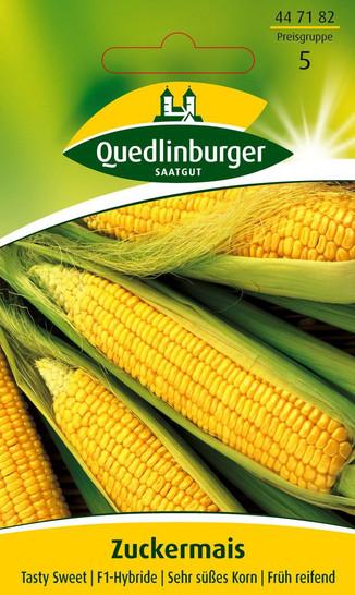 Maissamen - Zuckermais Tasty Sweet F1-Hybride von Quedlinburger Saatgut