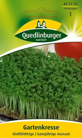 Gartenkresse Glattblättrige | Kressesamen von Quedlinburger