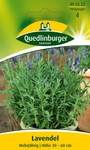 Kräutersamen - Lavendel von Quedlinburger Saatgut