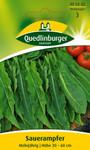 Kräutersamen - Sauerampfer von Quedlinburger Saatgut