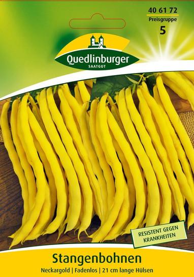Stangenbohne Neckargold | Stangenbohnensamen von Quedlinburger