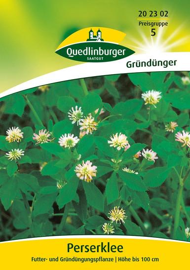 Gründünger - Perserklee von Quedlinburger Saatgut