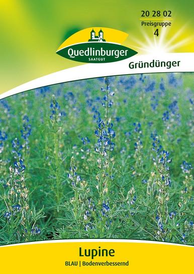 Lupine blau | Gründünger von Quedlinburger