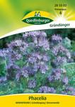Gründünger - Phacelia Bienenfreund von Quedlinburger Saatgut