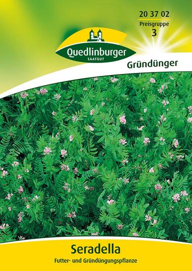 Gründünger - Seradella von Quedlinburger Saatgut