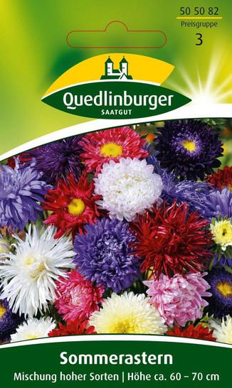 Sommeraster Mischung hoher Sorten von Quedlinburger Saatgut [MHD 01/2019]