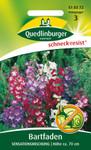 Bartfaden Sensationsmischung von Quedlinburger Saatgut