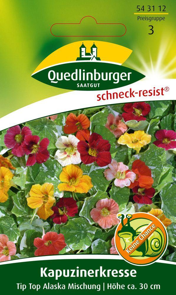 Quedlinburger Kapuzinerkresse Tip Top