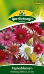 Papierblume Mischung von Quedlinburger Saatgut