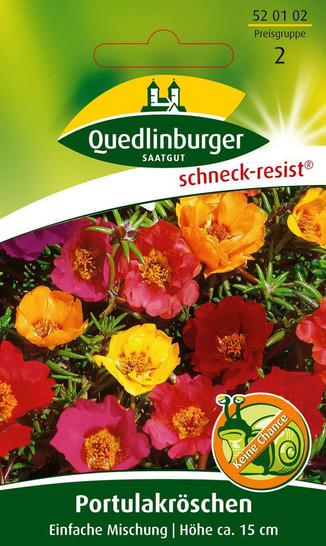 Portulakröschen Einfachblühende Supermischung von Quedlinburger Saatgut