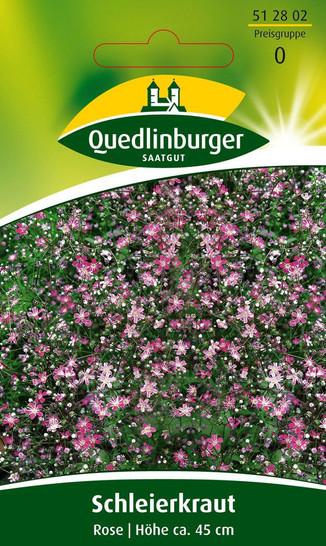 Schleierkraut Rose von Quedlinburger Saatgut