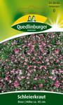Schleierkraut Rose | Schleierkrautsamen von Quedlinburger