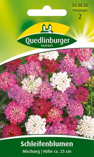 Schleifenblume Mischung von Quedlinburger Saatgut [MHD 01/2020]