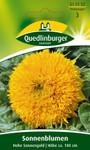 Sonnenblume Hohe Sonnengold von Quedlinburger Saatgut