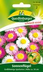 Sonnenflügel Großblumige Spielarten von Quedlinburger Saatgut