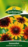 Sonnenhut Herbstwald von Quedlinburger Saatgut