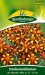 Studentenblume Mr. Majestic von Quedlinburger Saatgut