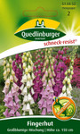 Fingerhut Großblumige Mischung | Fingerhutsamen von Quedlinburger