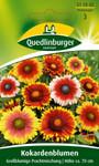 Kokardenblume Großblumige Prachtmischung von Quedlinburger Saatgut