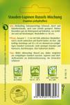 Stauden-Lupine Russels Hybrid-Mischung | Gründünger von Quedlinburger