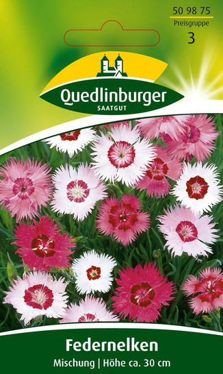 Federnelke Mischung von Quedlinburger Saatgut