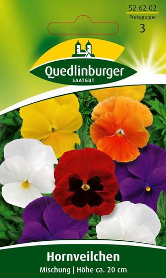 Hornveilchen Hybrid-Mischung von Quedlinburger Saatgut
