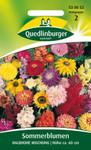 Sommerblumen Halbhohe Mischung von Quedlinburger Saatgut
