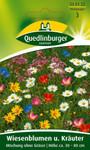 Blumenwiese - Wiesenblumen u. Kräuter Mischung ohne Gräser von Quedlinburger Saatgut