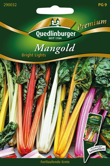 Mangold Bright Lights von Quedlinburger Saatgut