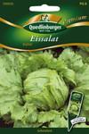Eissalat Stylist von Quedlinburger Saatgut