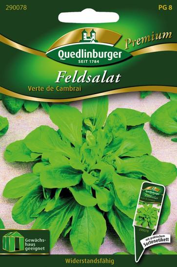 Feldsalat Verte de Cambrai von Quedlinburger Saatgut [MHD 01/2020]