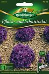 Pflücksalat Jenny | Salatsamen von Quedlinburger